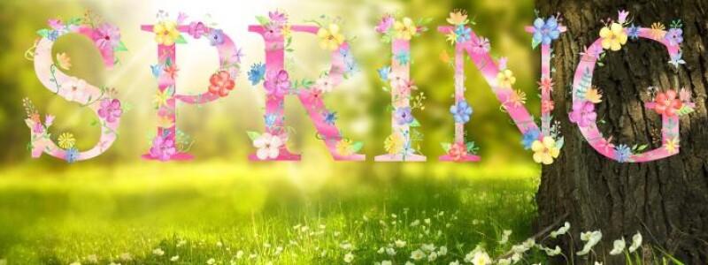 spring-1210194_1280